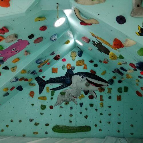 Rocódromo Moai Climbing
